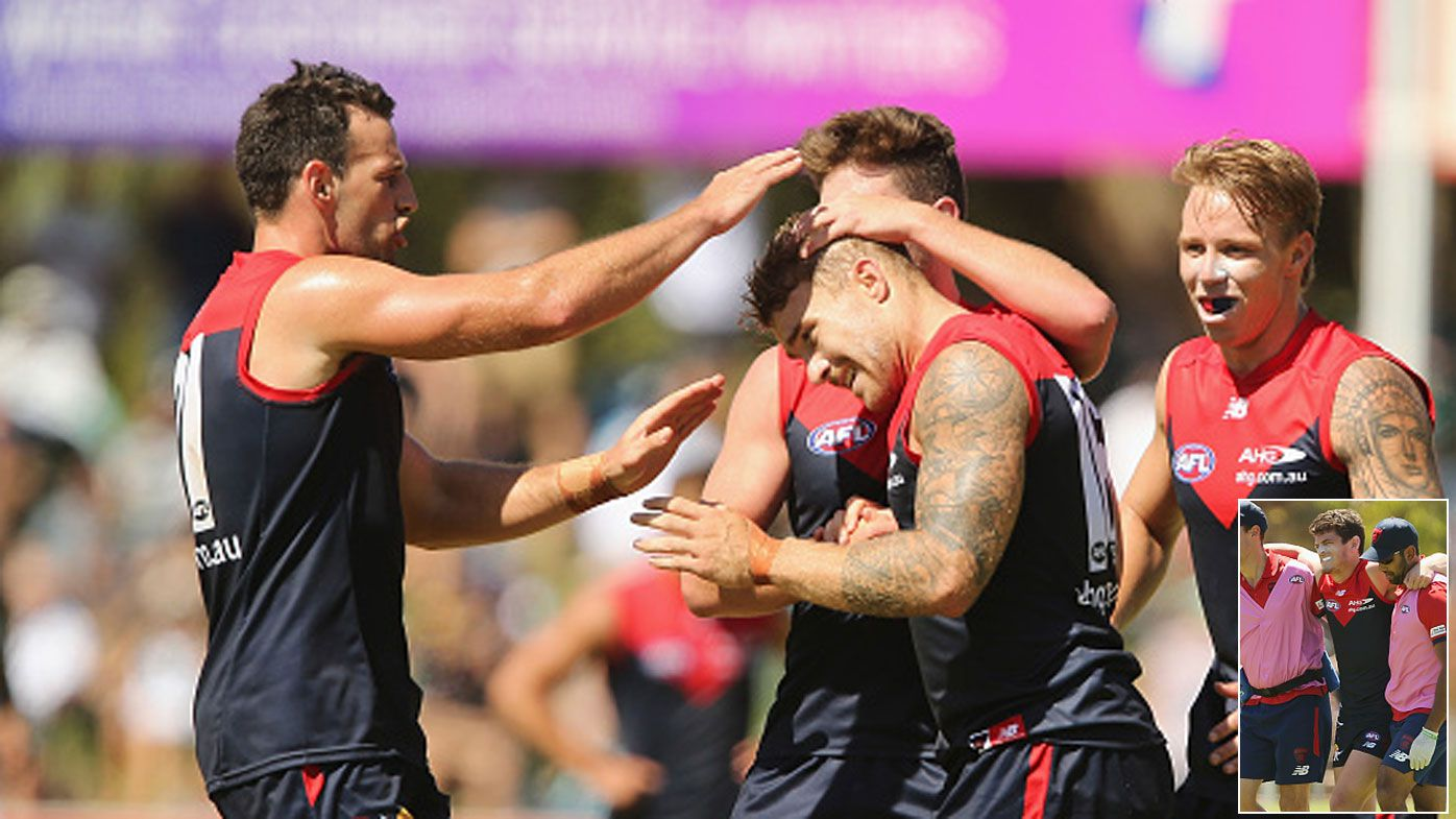 Demons too good for Port in AFL hitout