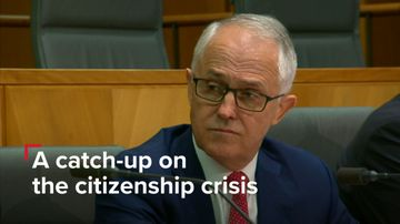 A catch-up on the citizenship crisis