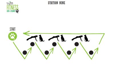 <strong>Station Nine: Pushup/Zig Zag combo</strong>