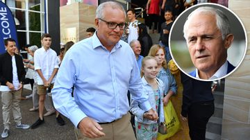 190422 Federal election 2019 Scott Morrison Malcolm Turnbull electorate polling