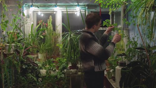 Norilsk man attends to plants in his apartment