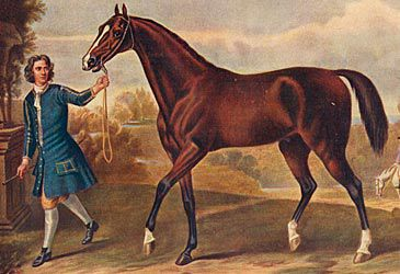 Daily Quiz: Where were the three original thoroughbred stallions from?