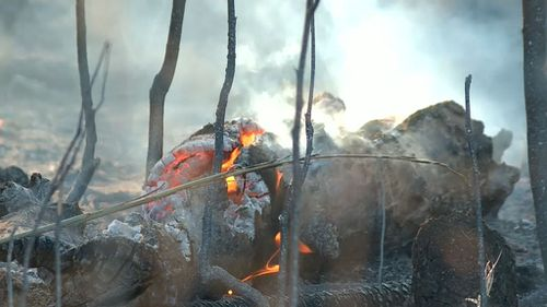 Smouldering logs at the Darwin River. (9NEWS)