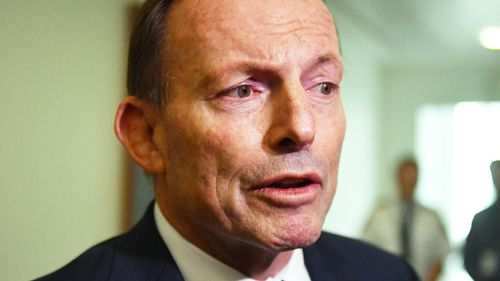 Scott Morrison has offered Tony Abbott a role as special envoy for indigenous affairs, but the former prime minister is yet to accept the appointment.