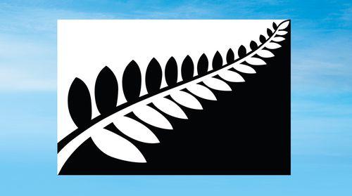 The Silver Fern flag.