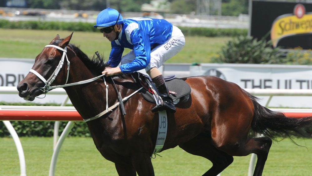 Mighty mare Winx. (AAP)