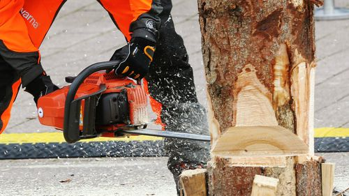 Learner driver who stitched his own chainsaw wound and drank gin for the pain before driving to hospital loses appeal