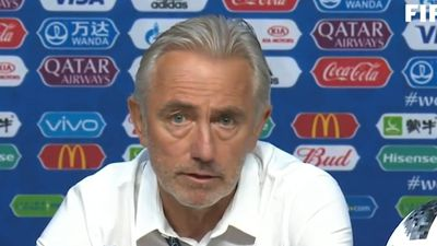 World Cup 2018: Iceland coach answers 'sex ban' reports