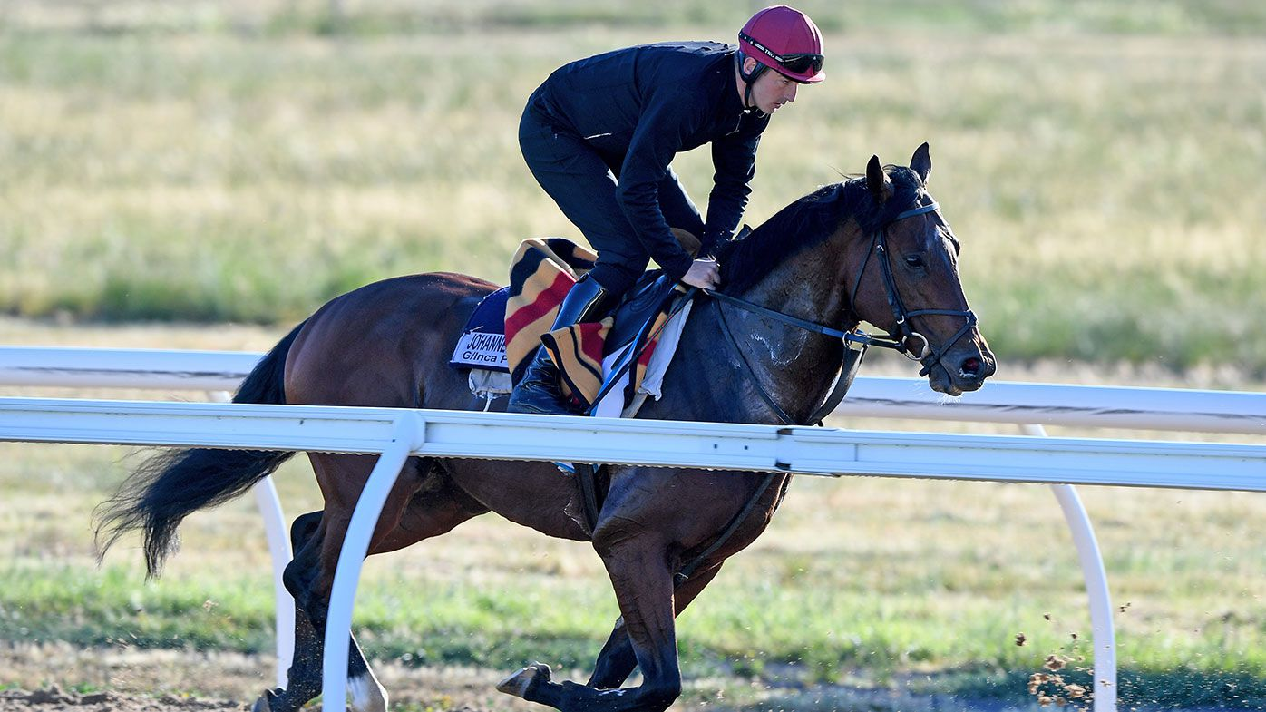 Melbourne Cup 2017: Final field and odds