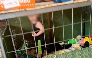 Child found living in cage with snake: Parents say it was the 'safest place'
