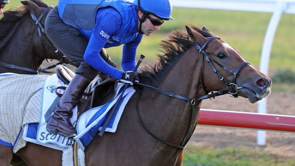 Scottish won't run in the Emirates Stakes after sustaining an injury. (AAP)