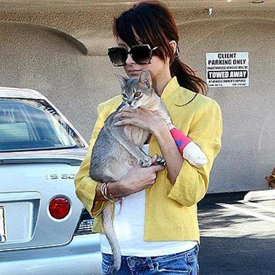 Stars and their cute kitties!<br/><br/>'It' cat