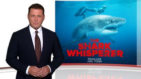 Ep 36 The shark whisperer, Fight of his life