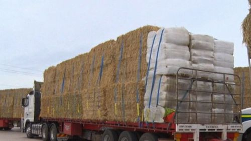 The convoy of trucks have brought 2800 bails of hay across from Western Australia.
