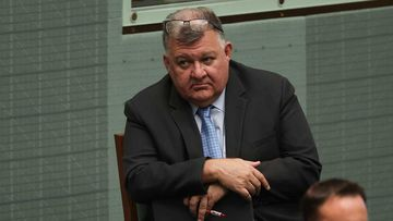 Liberal MP Craig Kelly during Question Time at Parliament House.