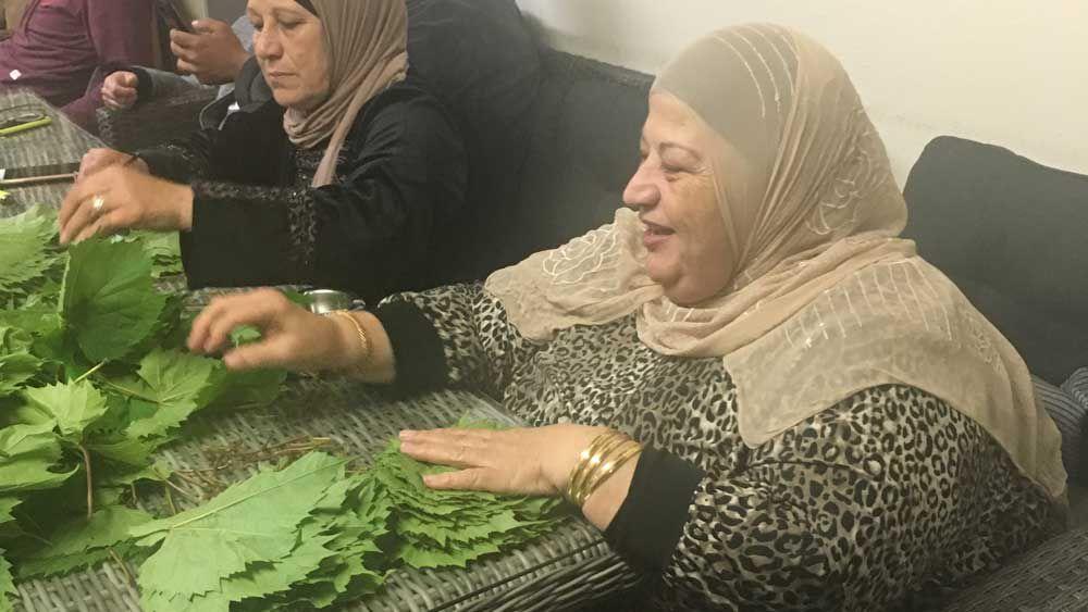 Shahrouk's grading vine leaves