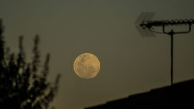 The supermoon seen from Jerrabomberra, NSW. (Supplied: Sam Duncan)