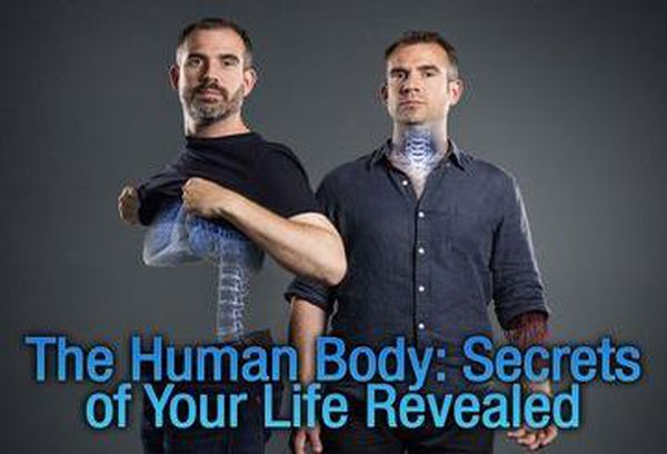 The Human Body: Secrets of Your Life Revealed
