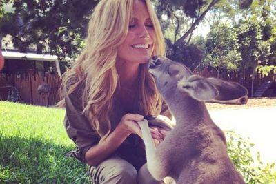 """@heidiklum: """"Kiss me Skippy #HeidiKlumIntimates #Sydney @HeidiKlumIntimates"""""""