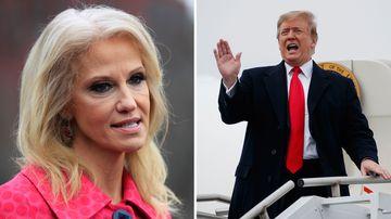 US Politics news Donald Trump Kellyanne Conway George Conway Twitter dispute