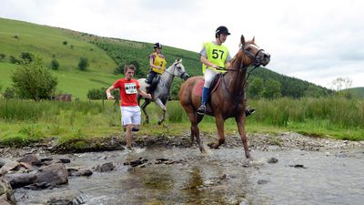 The Man vs. Horse Marathon started out as a pub argument about who would win a marathon: a horse or a man. More than 40 years later the race continues, and while men have won on occasion, the horses dominate.
