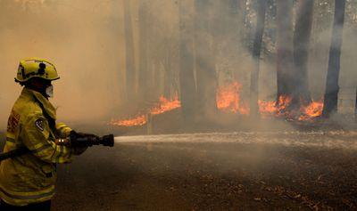Firefighter battles Taree fire