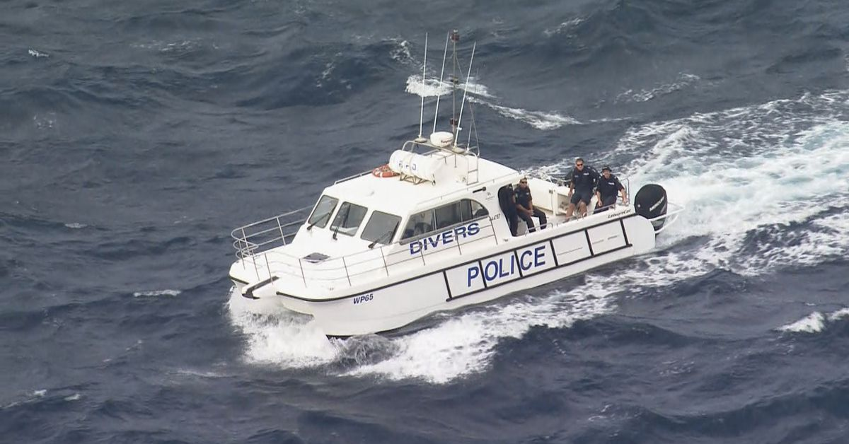 Police divers search waters near Melissa Caddick's home – 9News