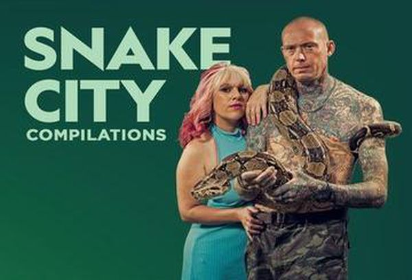 Snake City Compilations