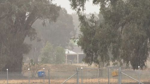 Wagga Wagga recorded 25mm of rain yesterday -  their highest single-day total since May.
