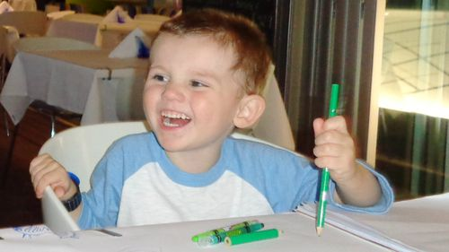 William Tyrrell has not been seen since he disappeared on September 12 last year. (Supplied)