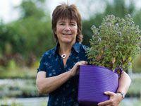 'Queen of herbs', Jekka McVicar