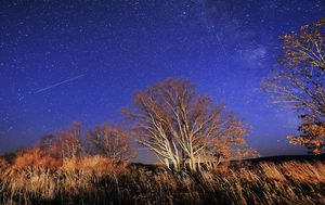 Orionid meteor shower: The best places and times to see it in Australia