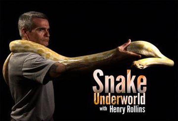 Snake Underworld With Henry Rollins