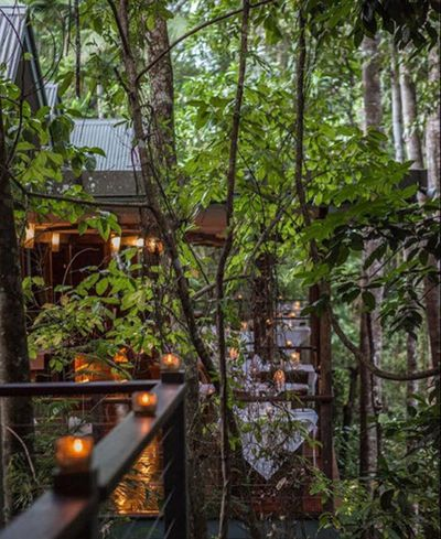 2. Silky Oaks Lodge, Mossman, Queensland