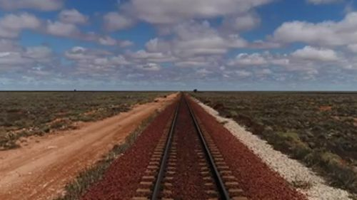 The Nullarbor Plain stretches 478 kilometres. (9NEWS)