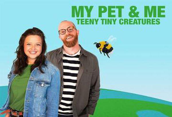 My Pet & Me: Teeny Tiny Creatures