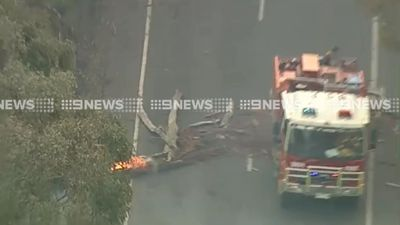 A fire truck navigates a road block by a burning branch. (9NEWS)