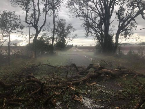 The SES have been working throughout the night with up to 50ml of forecast rain today expected to hamper their efforts.
