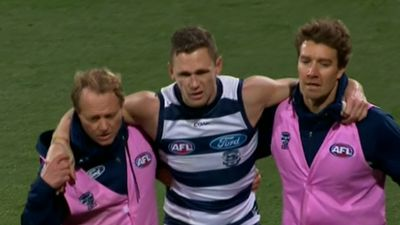 AFL news: Selwood, Taylor get new deals with Geelong Cats
