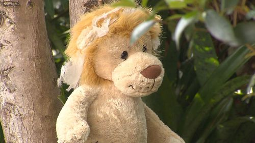 A Gold Coast couple have used soft toys to deter bush turkeys from their garden. (9NEWS)