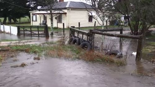 Man found neck-deep in Victoria floodwaters rescued