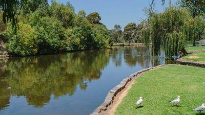 <p>Victoria, Melbourne: Coburg Lake Reserve, Coburg</p>