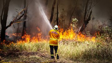 A New South Wales (NSW) Rural Fire Service volunteer douses a fire during back-burning operations in bushland near the town of Kulnura, New South Wales, Australia, on Thursday, Dec. 12, 2019. The smoke blanketing Sydney is a public health emergency, according to a coalition of Australian doctors and researchers who say climate change has helped fuel the wildfires that have produced unprecedented haze. Photographer: David Gray/Bloomberg
