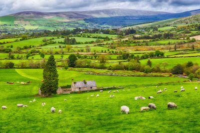 18. Ireland