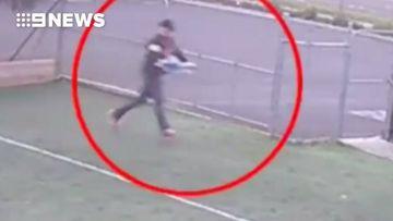 Fowl play as chook snatcher breaks into school's coop