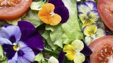 How to grow a beautiful edible garden