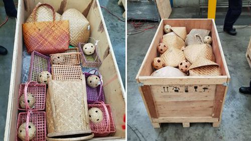 The packed crates were filled with timber handicrafts and souvenirs concealing the drugs.