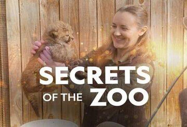 Secrets of the Zoo