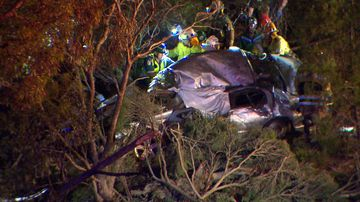 Teen dies in high-speed creek bed crash after police pursuit
