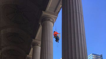 Wildlife protester in custody after scaling Parliament House
